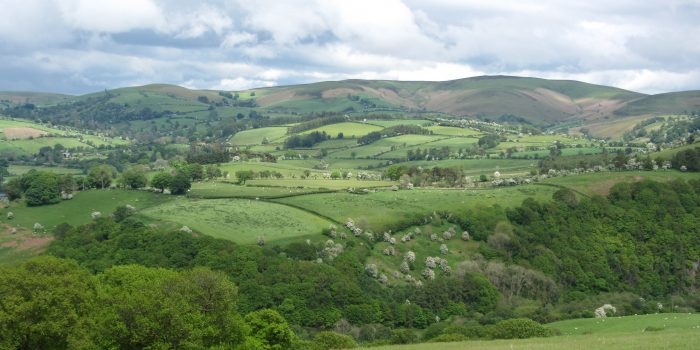 Glyndwr's Way National Trail