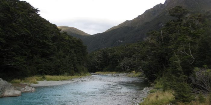 Mount Aspiring National Park New Zealand