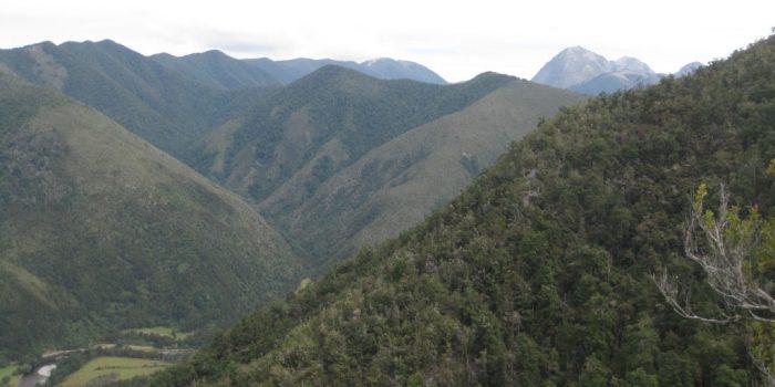 Kahurangi National Park New Zealand