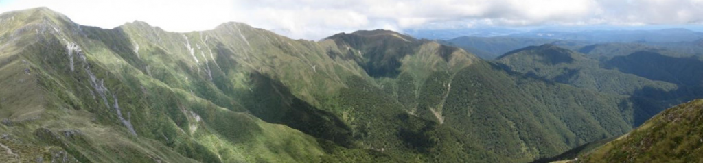 Tararua Forest Park New Zealand