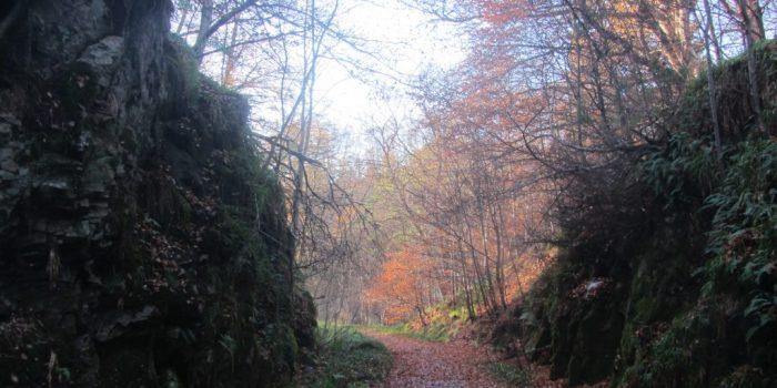 Speyside Way
