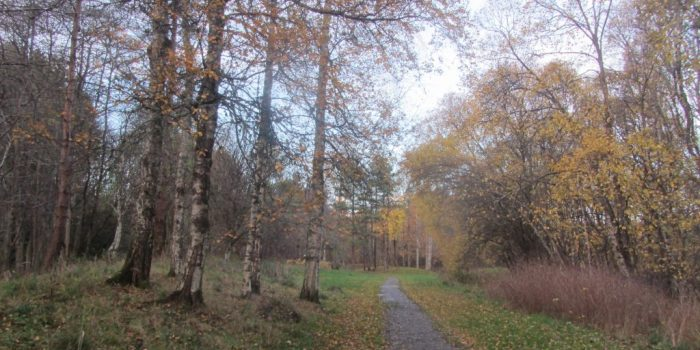 wild camping Speyside Way