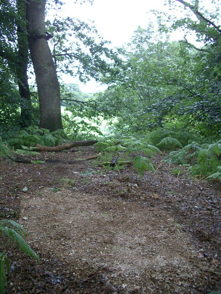 wild camping hadrian's wall path england